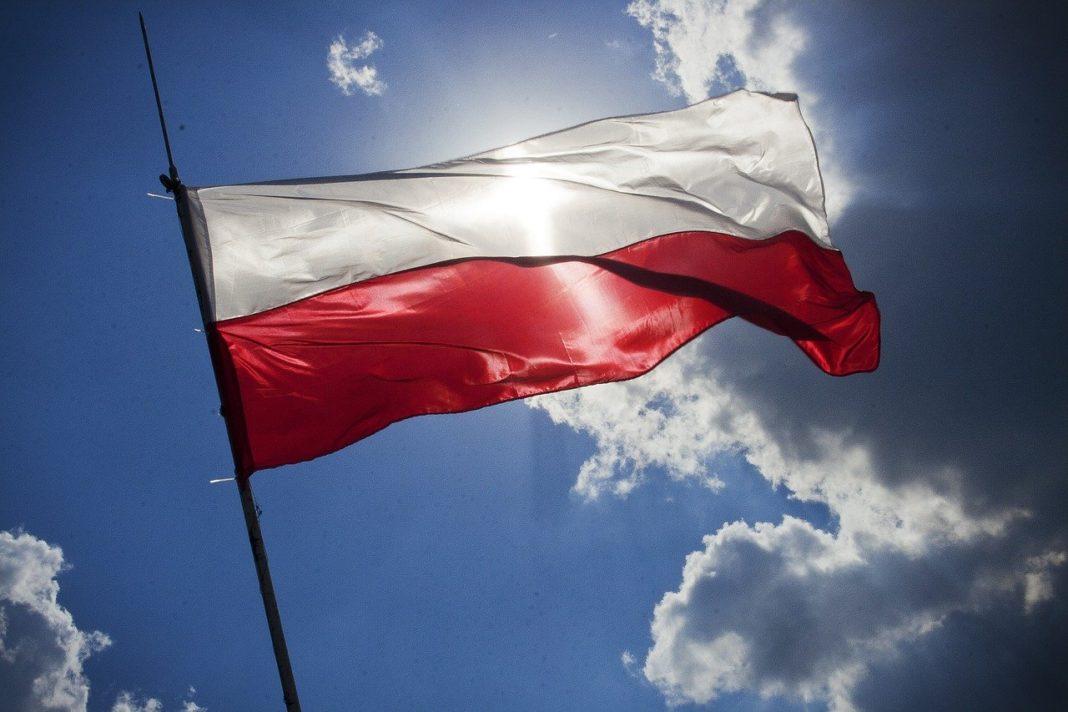 Sharing e-hulajnóg zdominowały polskie firmy