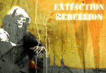 Ruch Extinction Rebellion zaatakował hulajnogi w Lyonie